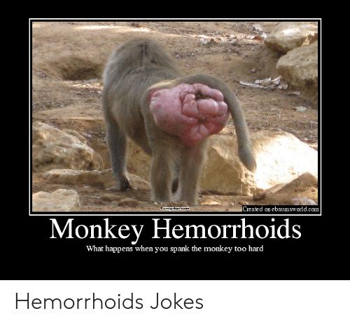 created-on-ebaumsworld-com-ewagntt-eom-monkey-hemorrhoids-what-happens-when-you-49926736.png